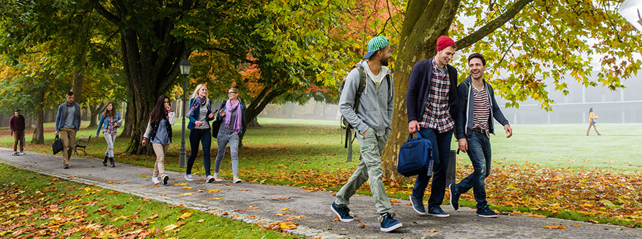happy students walking on a paved walkway through trees and grass.